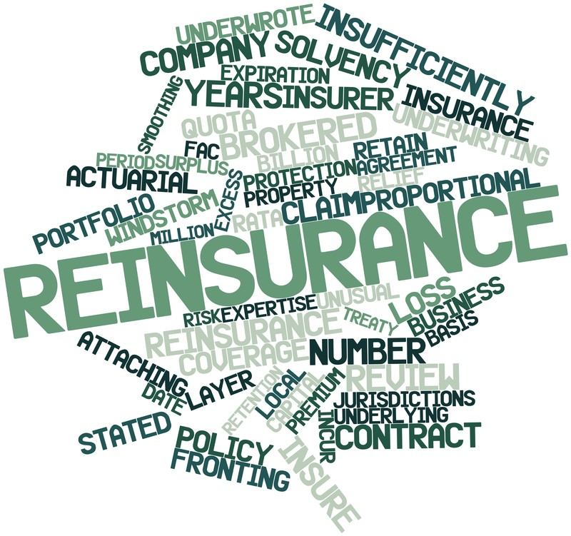 Adventures In Reinsurance Contract Wording on Directors And Officers Liability Insurance