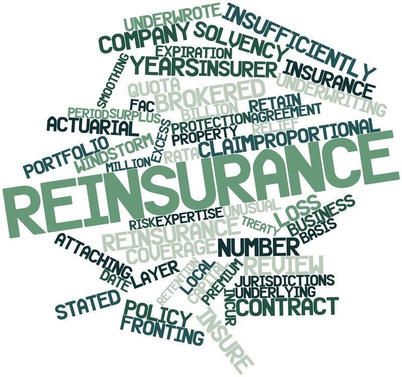Reinsurance Terminology Explained Bordereau Irmi