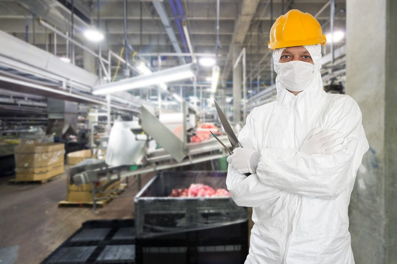 Meat factory worker holding cutting tools and wearing a mask and hard hat