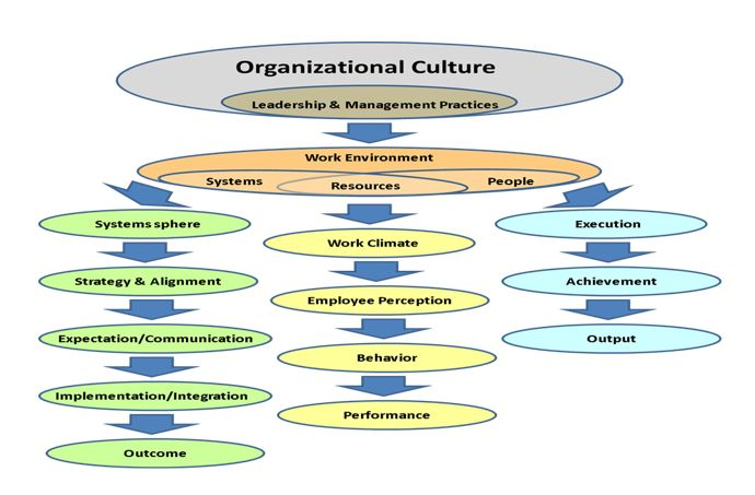 Functioning of Organizational Elements