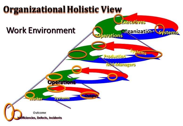 Organizational Holistic View