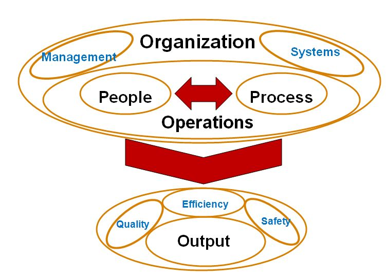 Organization and It's Operational System