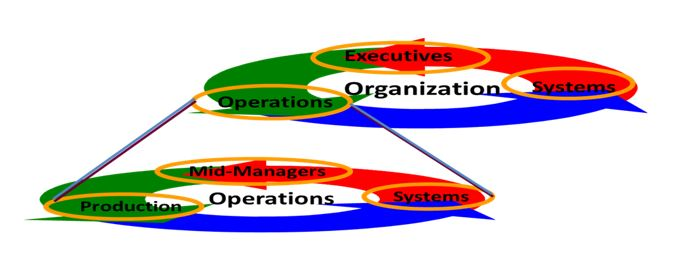 Influence of Organization on Operations