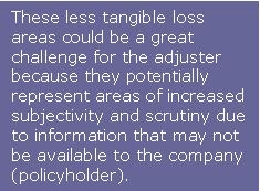 Less tangible loss areas could be challenge for adjuster