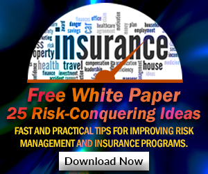 Download Free IRMI Update White Paper